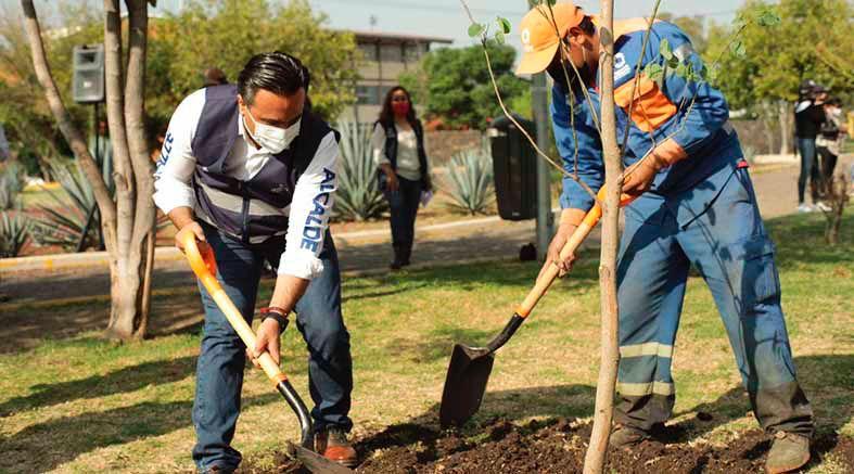 Municipio de Querétaro alcanzara crecimiento del 80% en masa vegetal para septiembre