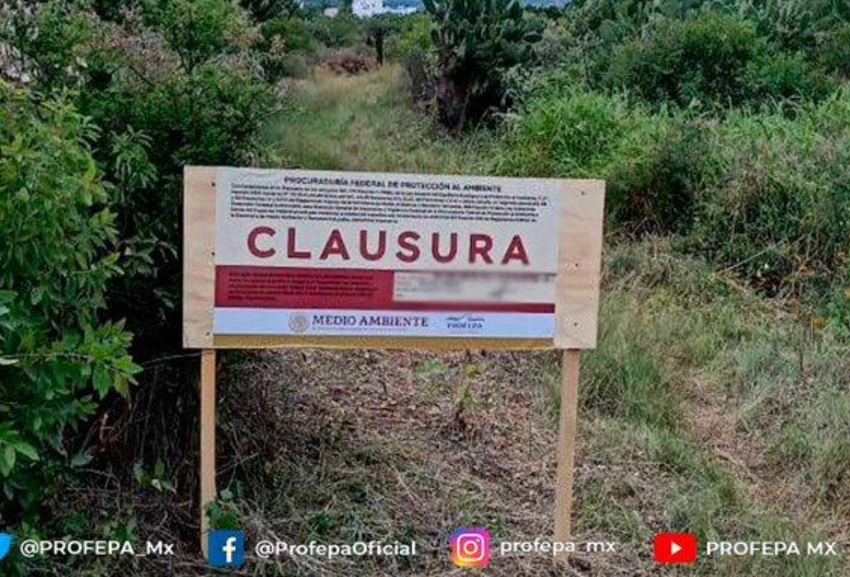 Profepa clausura trabajos en predio de Juriquilla por ser área natural
